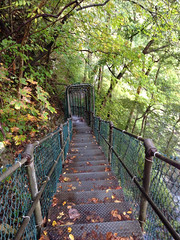 Burgess Falls: Oct 9, 2014 (Gina Stafford) Tags: sparta cookeville 2014 burgessfalls putnamcounty whitecounty spartatennessee october2014