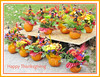 For Sale... Thanksgiving Bouquets (bigbrowneyez) Tags: thanksgiving flowers nature beautiful sign dedication fantastic forsale display sweet gorgeous pumpkins creative natura celebration dolce repetition fancy bouquet roadside fiori belli artful delightful centerpieces thanksgivingbouqets