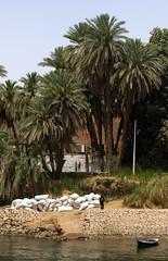 Le long de la rive du Nil (ludovic_tardy) Tags: river nil fleuve afrique rive gypte