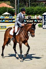 Manuel An riding Rackel Chavannaise (yasminabelloargibay) Tags: horse caballo cheval bay mare cavalier cavallo cavalo pferd equestrian stallion equine csi hest paard showjumping hpica horserider gelding showjumper equestrianism equitacion hipismo manuelaon manuelanon