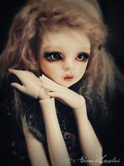 Ezme (Alruna's Lovelies) Tags: ball asian becca doll vampire mind bjd dim hybrid abjd dz jointed dollzone b45008