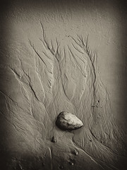 Patterns in the Sand (Padski1945) Tags: monochrome southwales sepia seascapes thebeach tenbyharbour tidaleffect