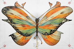 big butterfly (cortese.federico) Tags: detail art illustration butterfly painting insect dead artist pin artistic drawing decay decorative decoration moth insects pins painter draw decor detailed dcor cortese