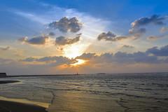 Gaomei Wetland (I am mr.k) Tags: sunset art beach 35mm canon 14 taiwan sigma taichung wetland 6d gaomei
