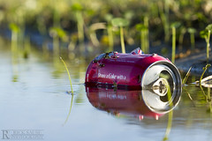 Share a Coke (Rick Sause Photography) Tags: plants plant man nature water grass trash reflections landscape puddle photography photo garbage focus with cola rick coke can pop holes litter made photograph manmade soda cocacola outer coca depth share banks obx refection sause ricksausephotography