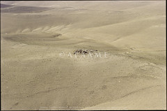 Nasir (Miller #359) (APAAME) Tags: archaeology ancienthistory middleeast airphoto aerialphotography nasir scannedfromnegative  aerialarchaeology jadis2205023 krp359 megaj10980