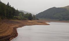 derwent reservoir (Johnson Cameraface) Tags: autumn macro 50mm derwent derbyshire peakdistrict olympus september f2 zuiko 2014 derwentreservoir zd e620 johnsoncameraface