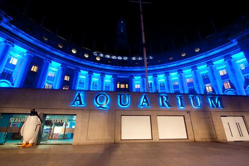 Thumbnail from Sea Life London Aquarium