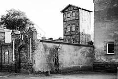 2014-10-05-Greifswald-20141005-174633-i197-p0050-_Bearbeitet1313-ILCE-6000-42_mm-.jpg