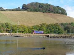 153318 Terras Crossing, Sandplace (Marky7890) Tags: train cornwall terras looe dmu fgw supersprinter 153318 sandplace 2l86
