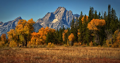 Mount Moran Autumn Moment (Jeff Clow) Tags: autumn fall bravo seasons fallcolor wyoming mountmoran tetons jacksonhole grandtetonnationalpark jeffclowphototours