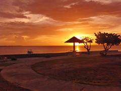 CIMG1031 (Joseph Illingworth) Tags: sunset lightpainting beach landscape utah iguana bryce bonaire