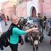 Marrakech_7539