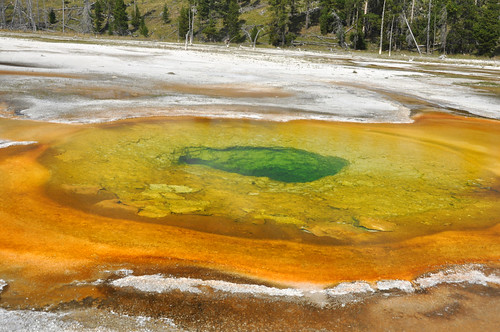 Chromatic Pool (16 August 2014) 2