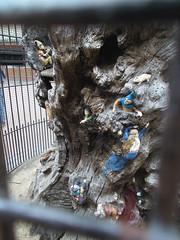 LONDON 1751 (RANCHO COCOA) Tags: wood uk england sculpture tree london garden elf trunk kensington carvings kensingtongarden sculpted elves elfinoak