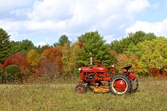 Tractor on Main Street (Read2me) Tags: farm vehicle autumn trees color landscape she cye gamewinner thechallengefactory friendlychallenges pregamewinner pregame perpetualchallengewinner agcgwinner challengeclubwinner