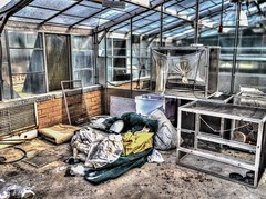 Abandoned lab (Thunder1203) Tags: abandoned oldbuildings greenhouse hdr photostream hothouse derilect canoneosm