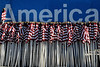 HEALING FIELDS 2014 001 (Larry Mendelsohn) Tags: usa america palmsprings flags coachellavalley veterans veteransday healingfields cathedralcityca