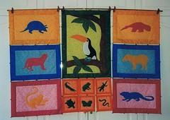 AMAZONAS 1 (C. Velasco (patch)) Tags: tapices
