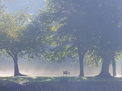 Wee Bench (Tobymeg) Tags: wee seat dock park dumfries sun up trees scotland autumnseat sunrise bench bank panasonic dmcfz72