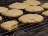 Peanut Butter Cookies (picsbyrita) Tags: food cooking yummy cookie bake tastey peanutbuttercookie ansh peterpanpeanutbutter favoriterecipe scavenger1
