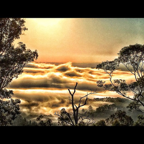 #sunrise #sky #sun #australia #australiagram #wollumbin #whostagram #worldcaptures #wow_australia #escapeexplore #exploringaustralia #photo_features #australia #australiagram #daily_photoz #fs_member #great_captures_australia #hdr_photogram #landscspestyl