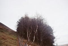 (Sarah__McLean) Tags: uk trees 35mm canon derbyshire peakdistrict eos30 edale 2014