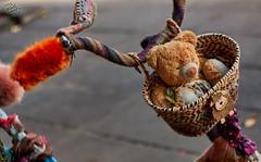Childhood (Wergiliusz) Tags: teddy bear toy bike soft fabric material silk wool cotton fluffy colorful happiness childhood handmade diy kaunas laisves lietuva lithuania litwa 70d canon