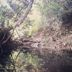 close beyond (Caste.) Tags: colore secret spot caste river creek home italy peace magic unexpected