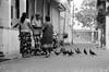 Galle Sri Lanka (luca64bj) Tags: d76 fujica605 galle srilanka tmax100 zeiss135