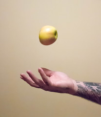 Day 270 (rendezvousnu) Tags: shutterspeed motion apple project365 projecteulalie eulalie