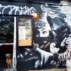 November 4, 2016 (Instagram) (h20series) Tags: instagramapp square squareformat iphoneography uploaded:by=instagram cellphone instagram dog athensohio athens ohio 247dreams localbusiness smallbusiness stimsonavenue stimson streetart graffiti outdoorart