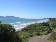 Waves at Raumati South (Kevin Fenaughty) Tags: outdoor walking seaside waves beach raumati island kapiti plant flower path flax park queenelizabeth wellington newzealand