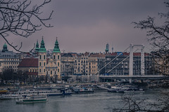 Budapest (Vagelis Pikoulas) Tags: pest budapest buda city cityscape river dunave canon 6d tamron 70200mm vc f28 view landscape january 2016 winter bridge church trees