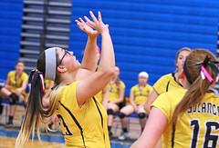 IMG_10390-01 (SJH Foto) Tags: girls volleyball high school lampeterstrasburg lampeter strasburg solanco team tween teen east teenager varsity push