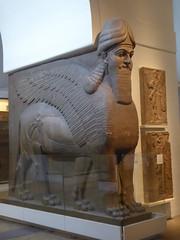 Lamassu from Nimrud (Aidan McRae Thomson) Tags: lamassu sculpture britishmuseum london ancient statue assyrian mesopotamia nimrud