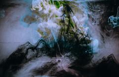 @FYABRIANSCOTT (fya_brianscott) Tags: experiment experimental photography fine art ink spilled underwater water design science time concept conceptual color colorful heaven vivid vibrant clouds mix mixture nikon artist visual blue drip