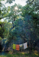 Campsite still life (Lars Plougmann) Tags: dryingclothes sunstar coloradobendstatepark texas camping towel campsite bend unitedstates us dscf5530