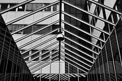 (formwandlah) Tags: glas glass symetrie spiegel spiegelung mirror reflection reflektion kaiserslautern urban city noir dark strange melancholic melancholisch sureal bizarr skurril abstrakt abstract darkness light bw blackwhite black white sw monochrom high contrast ricoh gr pentax formwandlah thorsten prinz einfarbig surreal architecture architektur tower turm babel hochhaus rathaus finsternis dramatic sky wolken dster outdoor minimalismus schrfentiefe gebude graphisch graphic archtiektur lines linien