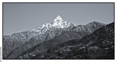 Mardi Himal and the Machhapuchhre from Lwang (L'Abominable Homme de Rires) Tags: nepal tamron 2470mmf28 canon 5dmkiii nb noiretblanc blackwhite landscape himalaya mardihimalbasecamp huwans clubaventure trekdumardihimal mardihimaltrek travel trekking mountain fishtail acap eos5dmarkiii
