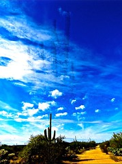 Ode to Magritte <> Saguaro High In The Sky (Chic Bee) Tags: renmagritte odetomagritte art surreal digitalpainting floatingsaguarocactus whiteclouds bluesky sabinocanyon tucson arizona southwestren magritteode magritteartsurrealdigital painting southwesternusa americansouthwest