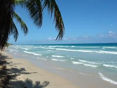 playa guacuco (fabioitalcaribe) Tags: paradiso viaggiare viaggio