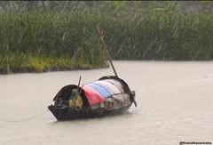 Life dissolve in Rain (robiul_hasan_babu) Tags: rain river life boat nature photography