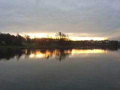 Gold slither of a sunrise (markshephard800) Tags: clouds water lac grey gold sunlight sunrise reflections wetreflections pond lake scotland remfrewshire paisley
