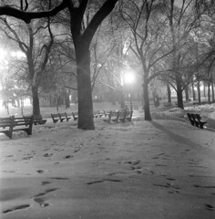 020459 09 (ndpa / s. lundeen, archivist) Tags: nick dewolf nickdewolf blackwhite photographbynickdewolf tlr bw 1959 1950s february winter boston massachusetts beaconhill night nighttime wintersnight park common bostoncommon tree branches snow snowy snowfall trees film 6x6 mediumformat monochrome blackandwhite light lights footprintsinthesnow benches parkbenches