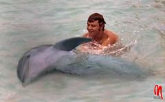 Phot.Curaao.Dolphin.Bini.01.1972.jpg (frankartculinary) Tags: nikon d800 d300 d200 f2 f3 f4 coolpix agfaisoletteiii frankartculinaryyahoode venezuela coloniatovar hotelselvanegra beach playa caracas corrida toros bullfight caracashilton curaao cactus halloween dolphin