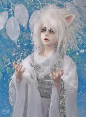 Blizzard (Lorena Firefly) Tags: bjd boy balljointeddoll blue doll dollfie demon white ears fox demonfox manga anime pure immortalityofsoul ios izmael ios50bodyatype co winter snow moon snowfox