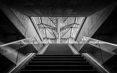 \ 4C I 3C / (Blende1.8) Tags: lissabon lisboa lisbon oriente station calatrava santiagocalatrava carstenheyer urban modern contemporary architecture architektur sigma1224mmhsmii nikon d750 indoor stair stairs stairway treppe aufgang symmetry symmetrie bahnhof beton concrete portugal