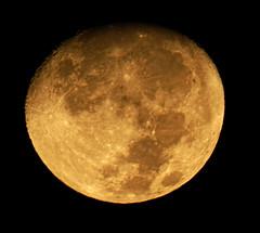 Moon111216 (kendoman26) Tags: moon luna waxinggibbous crater fujifinpix fujifinepixs1 topazdetail topazsoftware