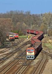 628 108 H-START (...sneken a vonat) Tags: 161121 628 628108 628108start bahn szentes cukorrpa cukorrpaszezon2016 eisebahn line130 luganszk m62 m62108 mav mozdony mv rail railway szergej tehervonat train tren trenur trenuri vaggonstypeeas vast vlacik vlak vlaky vonat zeleznice locationszentes 108 uresrepa2016 uresrepa railroad